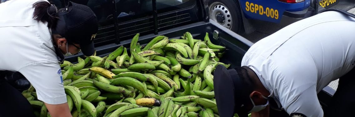 Banco de Alimentos recibe donación que favorece a muchas personas